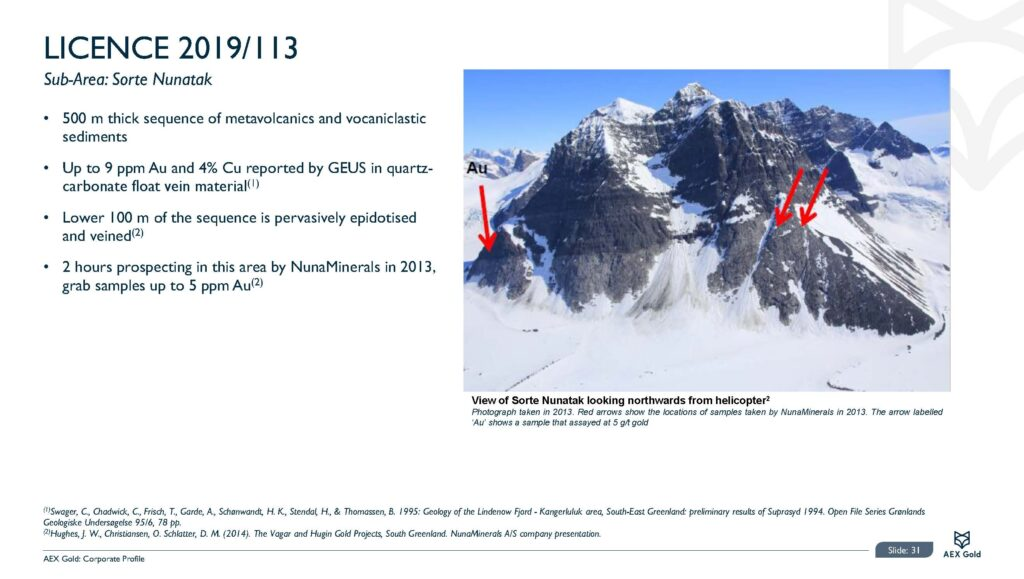 Aex Gold Corporate Presentation Feb 21 Final Page 31